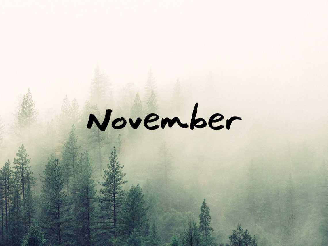 Havi ájurvéda: November