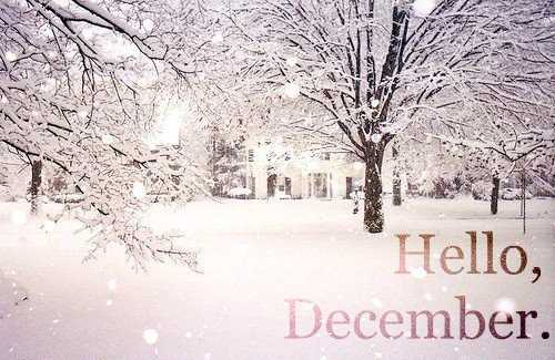 Havi ájurvéda: December