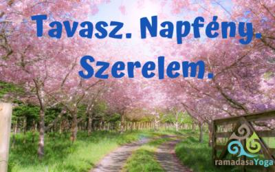 Havi ájurvéda: Április – Tavaszi láz!